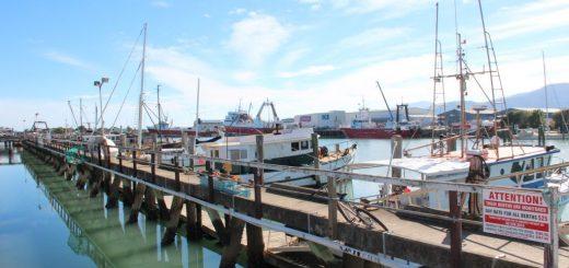 Nelson - Port